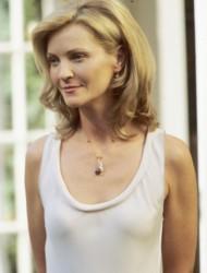 Joan Allen, candidata per <i>Litigi d'amore</i>
